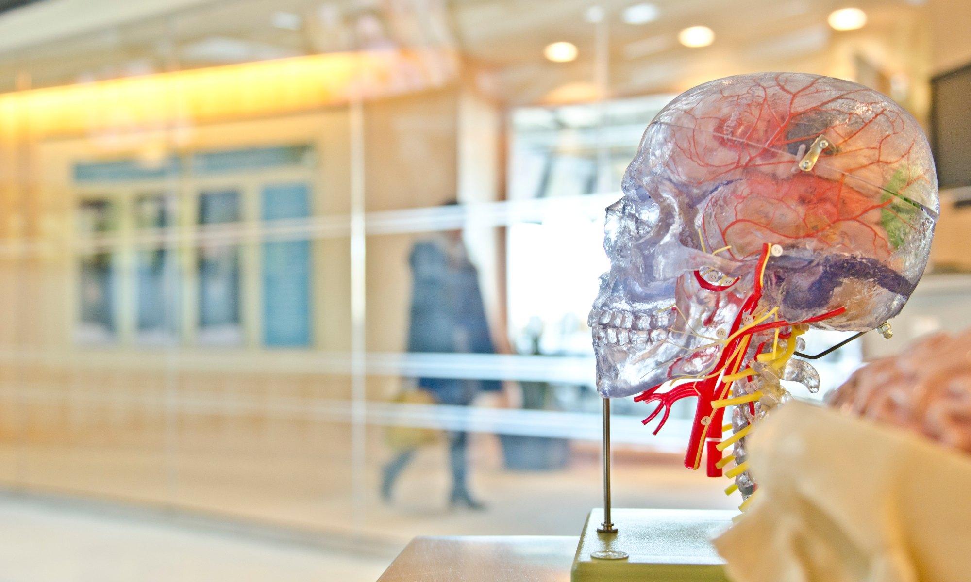 jfhumphreys brain injury